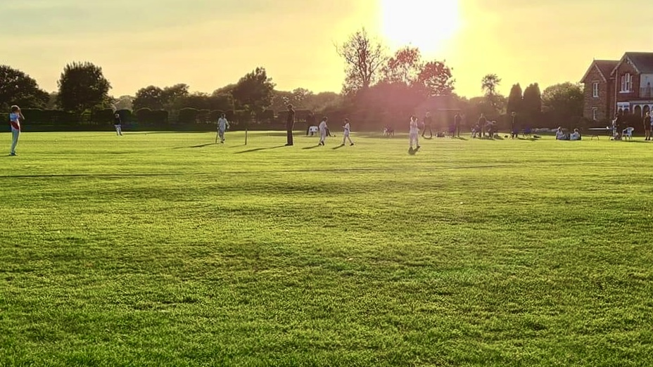 Junior cricketers playing a match at the best cricket club in York